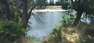 Discovery Park - American River Parkway Lower Reach