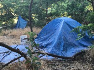Illegal camp on ARP